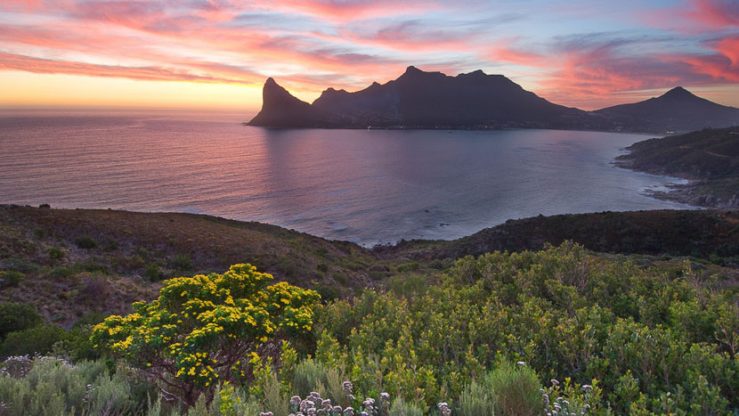 Découverte de la péninsule du Cap, Cape Town, Afrique du Sud © Shutterstock