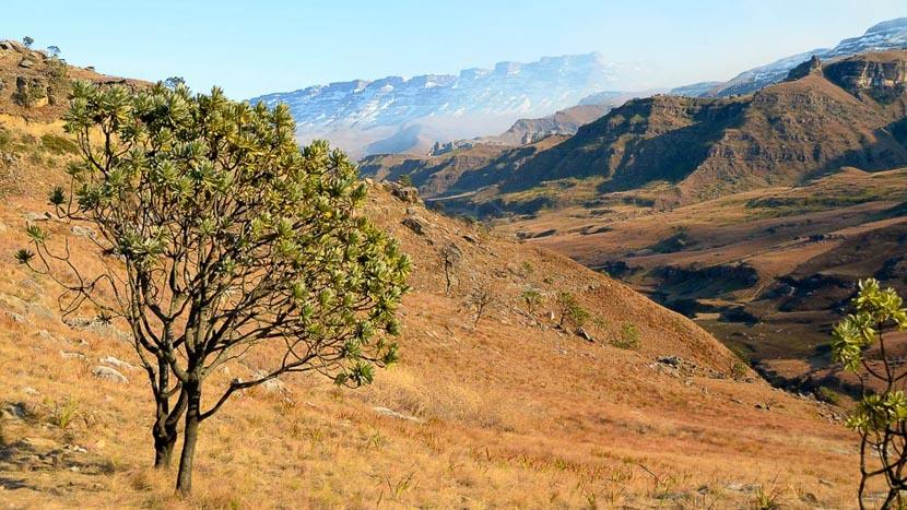 Les paysages du Drakensberg, Paysages du Drakensberg, Afrique du Sud © Marie Olona