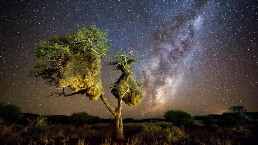 Safari à cheval à Tswalu, Kalahari, Afrique du Sud