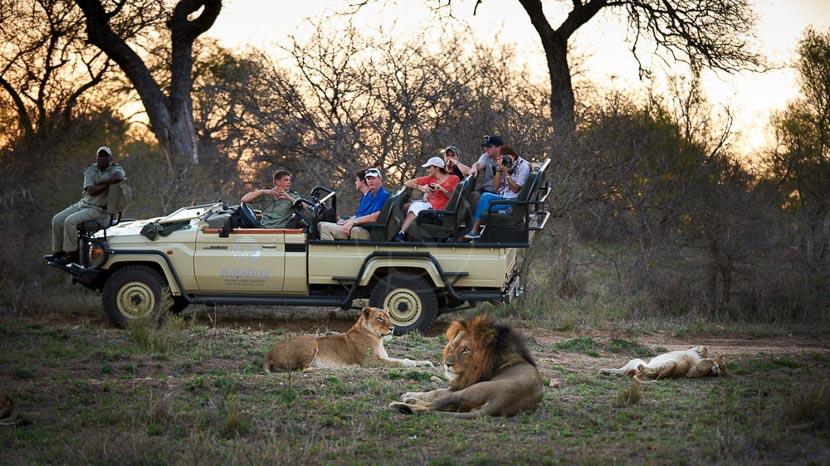 Réserve privée de Kapama, Kapama River Lodge, Afrique du Sud
