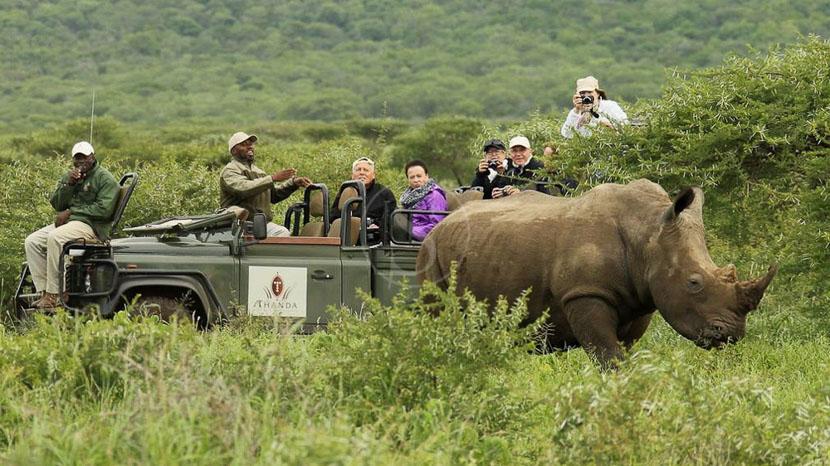 Kwazulu-Natal, Thanda Game Reserve, Afrique du Sud © Christian Sperka