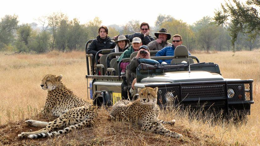 Les réserves privées du Kruger, MalaMala Game Lodge, Sabi Sand