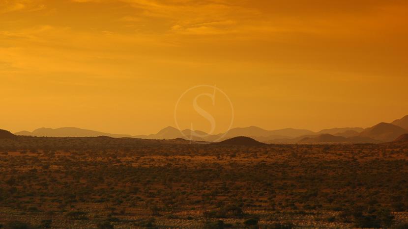 Safaris personnalisés à Tswalu, Tswalu Game Reserve, Afrique du Sud