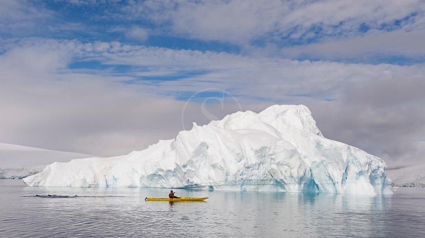 Sorties en kayak avec un guide naturaliste, Kayak de mer en Antarctique © Shutterstock