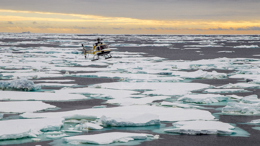 Approche des Manchots Empereurs en hélicoptère, Mer de Ross, Antarctique © Oceanwide