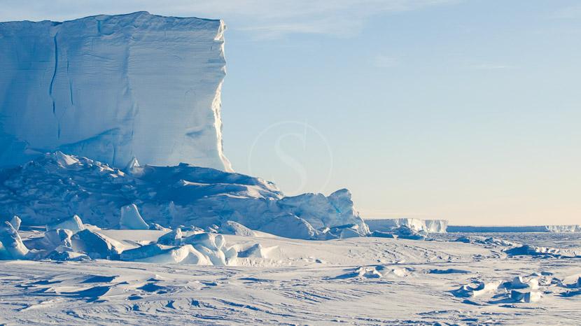 Approche des Manchots Empereurs en hélicoptère, Mer de Weddell, Antarctique © Shutterstock