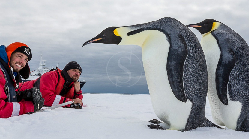 Expédition en Mer de Ross, Mer de Ross, Antarctique © Oceanwide