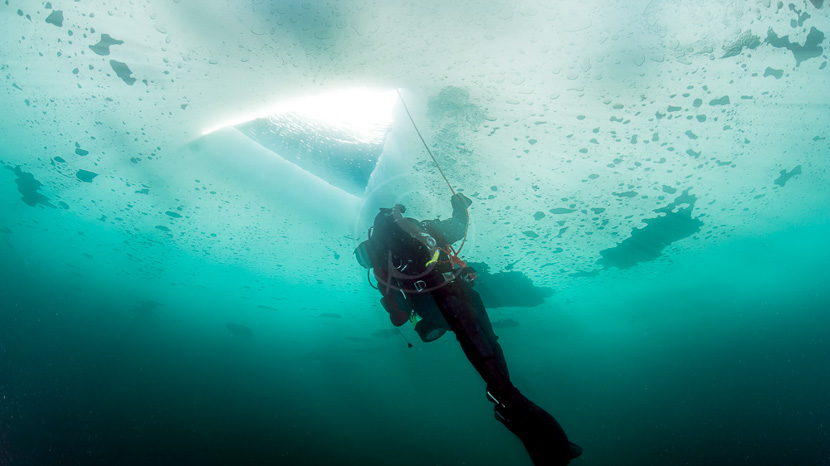 Plongée et snorkeling en Antarctique, Plongée en Antarctique © Shutterstock