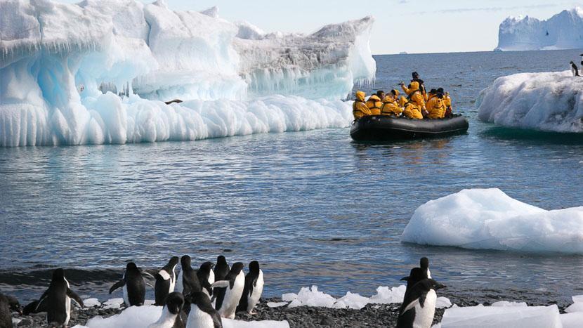Croisière en Antarctique Cap Horn et Diego Ramirez, Sortie en zodiac © Quark - Keith Gunnar