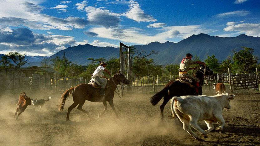 Une journée à l'Estancia Nibepo Aike, Estancia Nibepo, Argentine