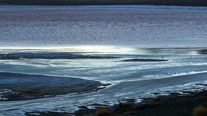 Laguna Colorada, Laguna Colorada, Bolivie © Alain Pons