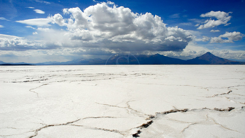 Safari 4x4 dans le salar d'Uyuni, Salar d'Uyuni, Bolivie © Alain Pons