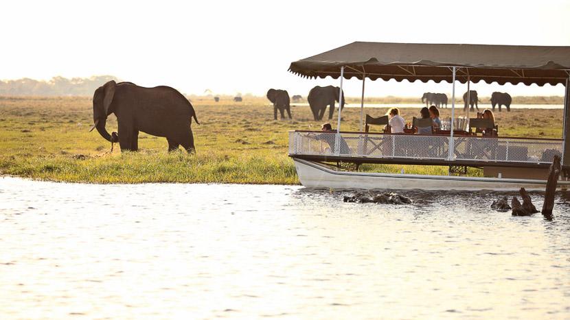 Parc national de Chobe, Chobe under Canvas, Botswana © &Beyond