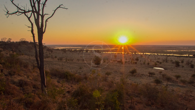 La rivière Chobe, Ngoma Safari Lodge à Chobe, Botswana