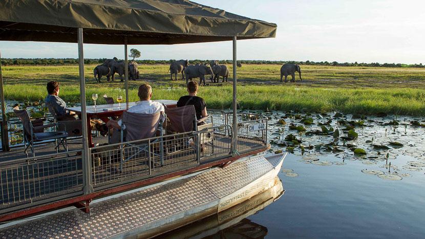 Safari en bateau sur la rivière Chobe, Chobe Game Lodge