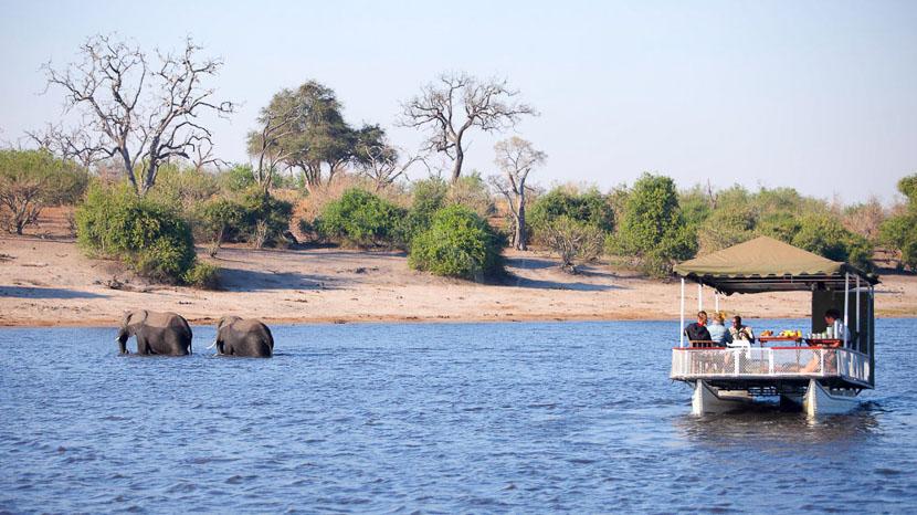 Safari en bateau sur la rivière Chobe, Chobe under Canvas, Botswana © &Beyond