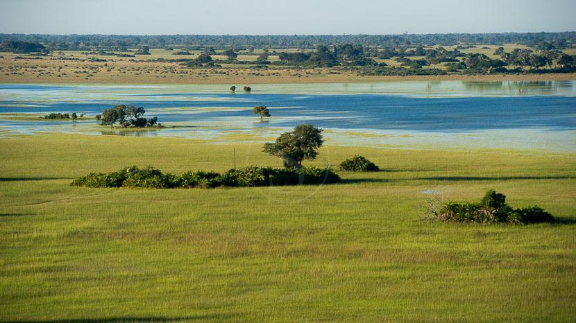 Delta de l'Okavango, Jacana Camp, Botswana © Wilderness Safaris