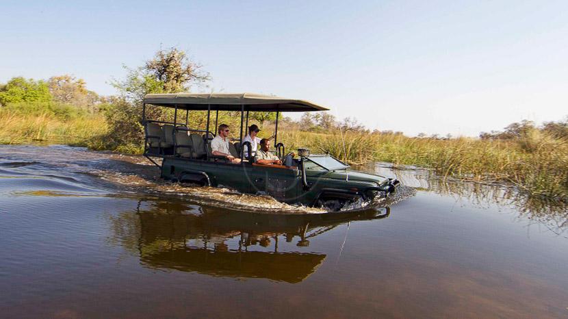 Safari en 4x4 dans le delta de l'Okavango, Camp Xakanaxa, Botswana