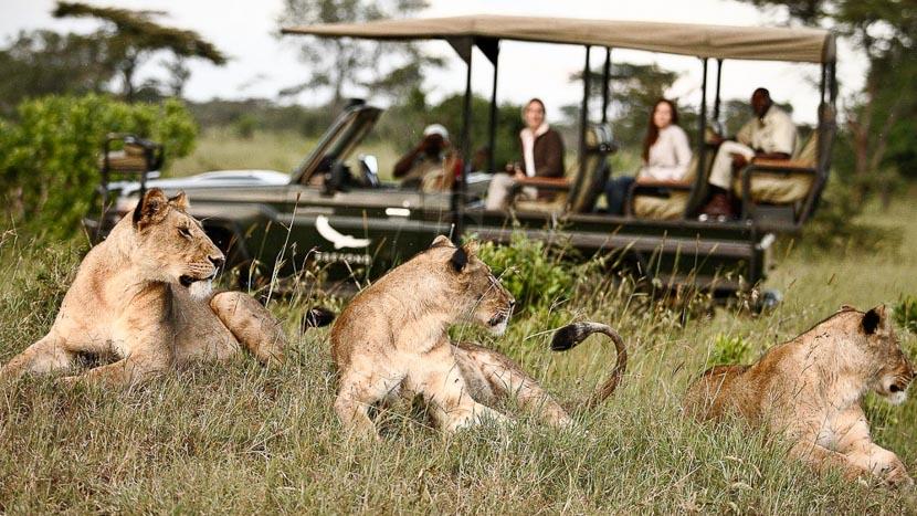 Safari en 4x4 dans le delta de l'Okavango, Xudum Delta Lodge, Botswana © &Beyond