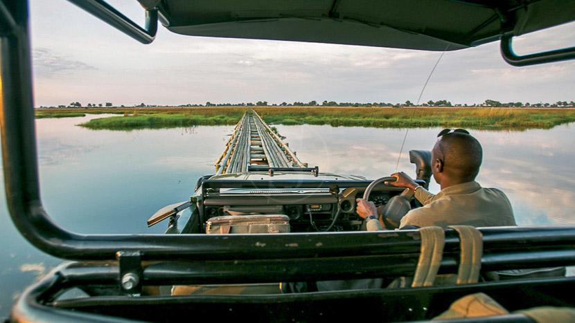 Safari en 4x4 dans le delta de l'Okavango, Duba Plains Camp, Botswana © Beverly Joubert