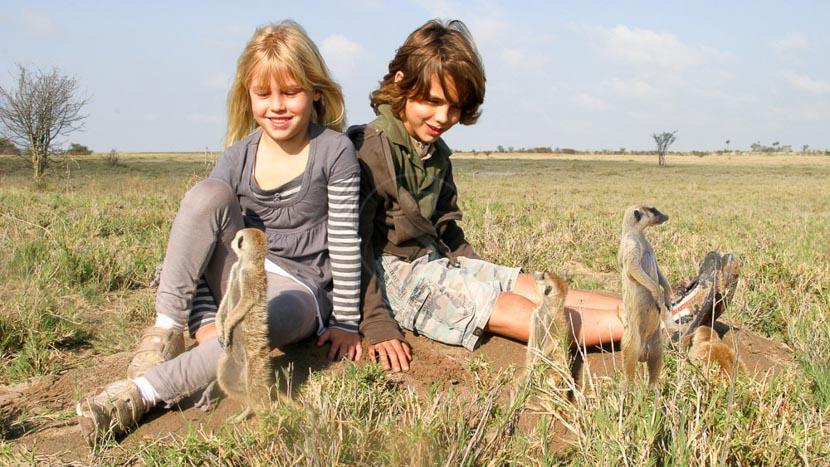 Suricates au pan de Makgadikgadi, Jack's Camp, Botswana