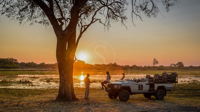 Réserve de Moremi, Sanctuary Chiefs Camp, Botswana