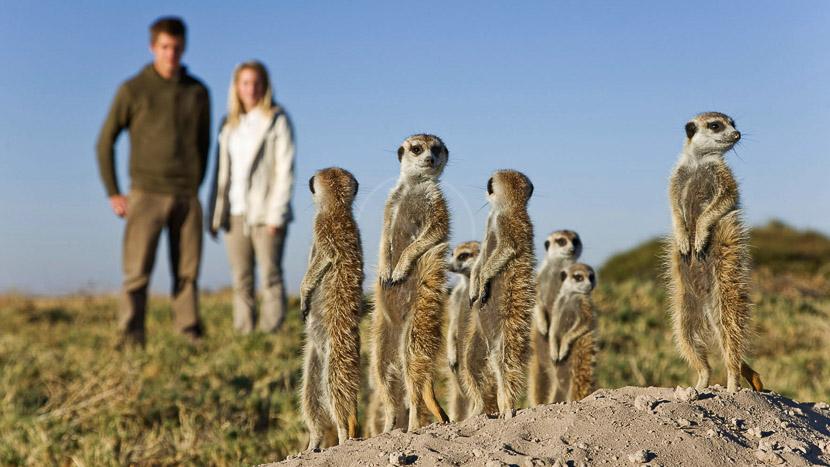 Activités à San Camp, Jack's Camp, Botswana © Natural Selection