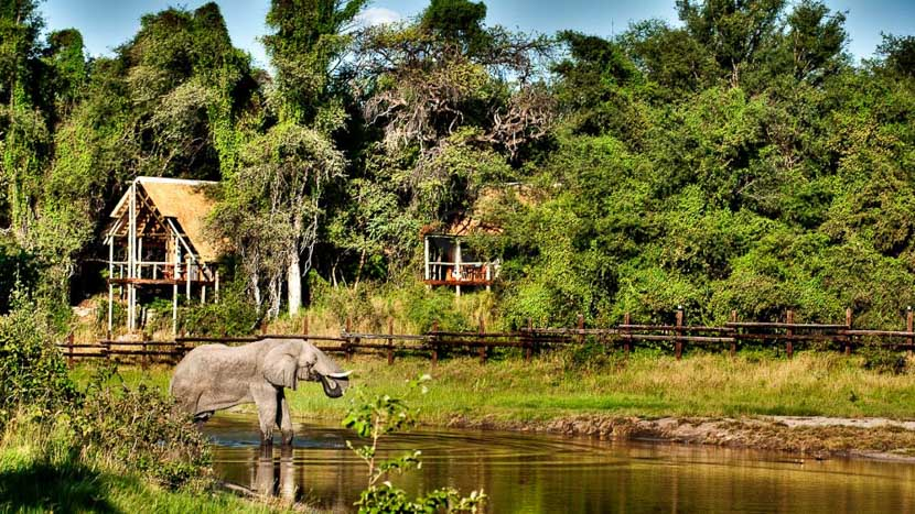Savute, Savute Safari Camp, Botswana