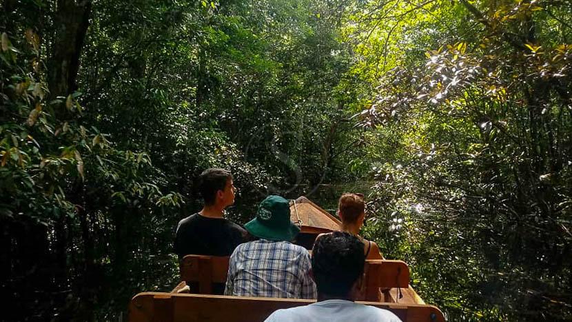 Croisière 5 jours / 4 nuits à bord de l'Amazon Odyssey, Amazon Odyssey, Brésil © Tous droits réservés