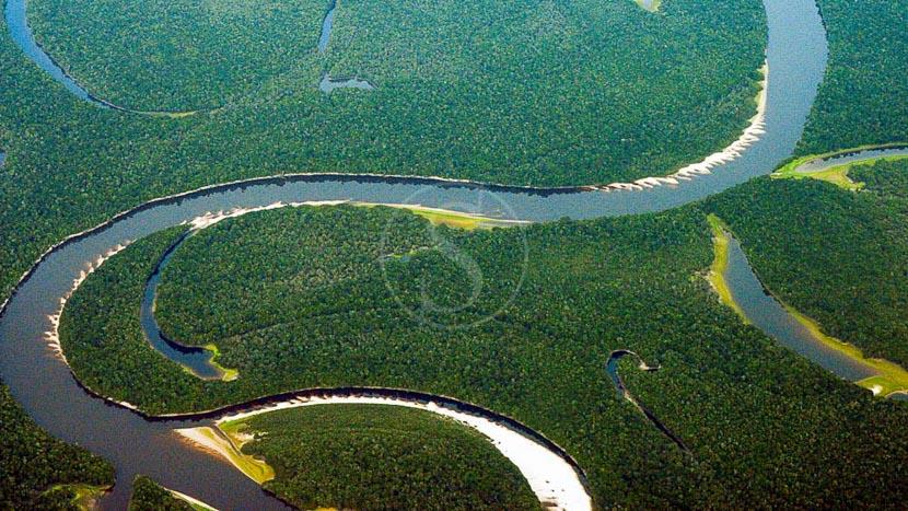 Amazonie,