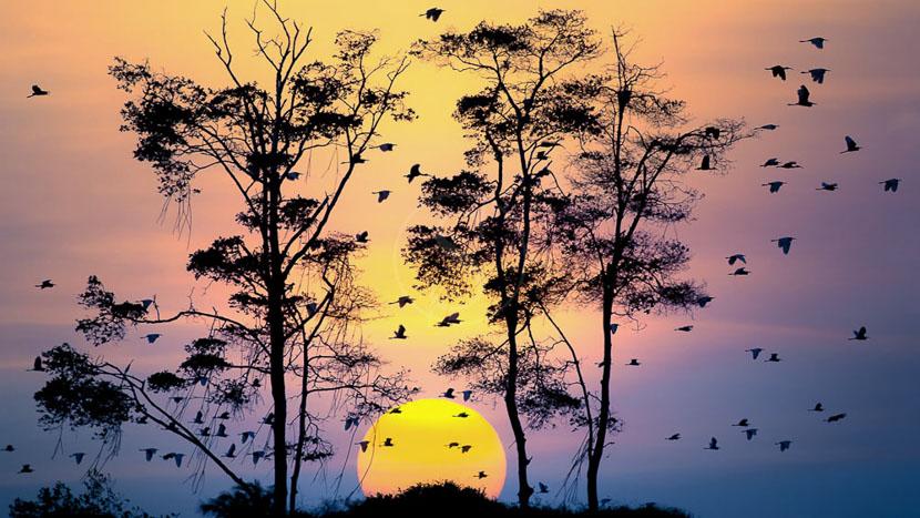 La route des émotions en posadas de charme, Parnaiba, Brésil © Passion Brazil