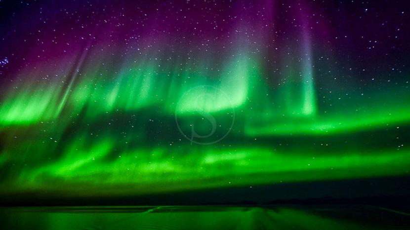 Les aurores boréales , Nanuk Polar Bear Lodge, Canada © Churchill Wild