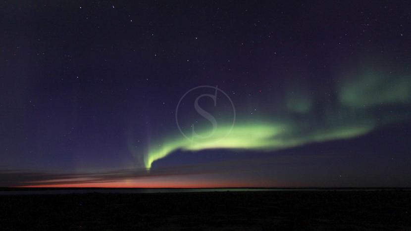 Les aurores boréales , Migration des Caribous, Manitoba