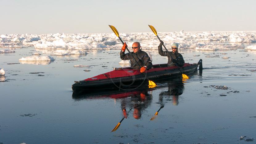 Faire du kayak avec les narvals, Expédition en Terre de Baffin, Canada © AK