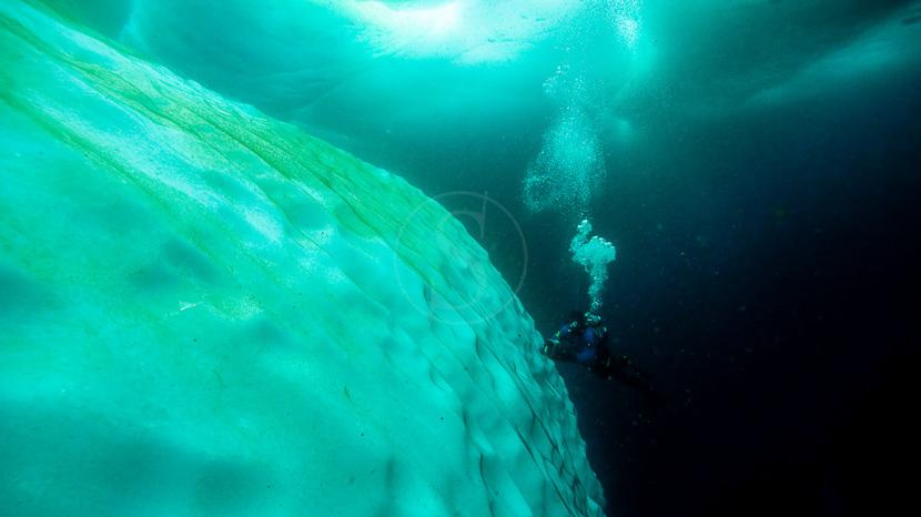 Faire de la plongée polaire, Plongées sous glaces sur Baffin Island, Canada © Fernando Garcia