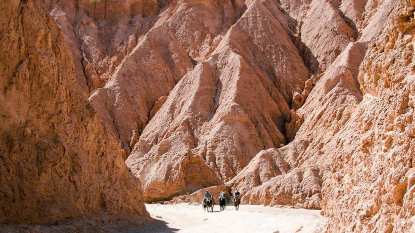 Randonnée à cheval dans l'Atacama, Ambiance de l'Atacama avec Awasi © Awasi