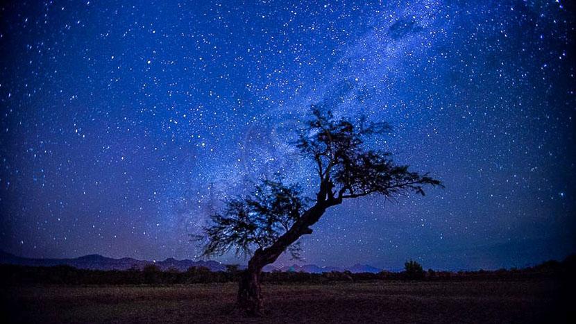 Soirée d'astronomie,