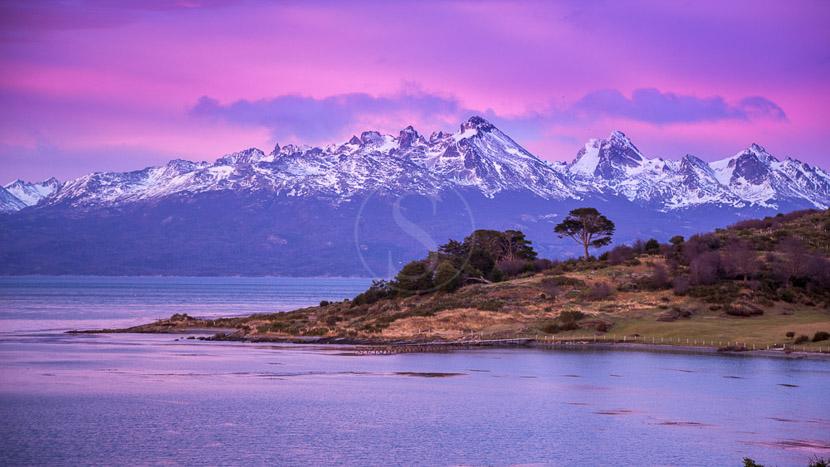 Croisière d'expédition en Patagonie à bord de l'Ultramarine, Ushuaia et Terre de Feu, Argentine © Shutterstock