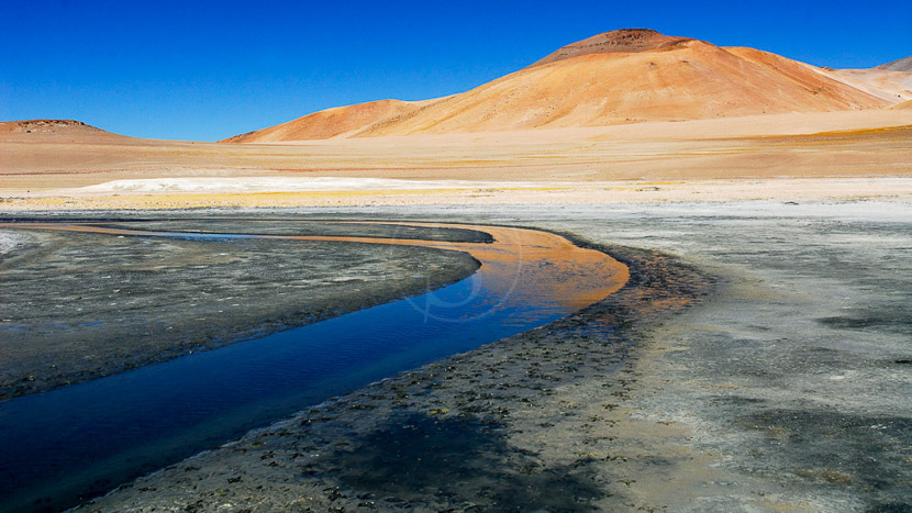 Salars de l'Atacama, Désert de l'Atacama, Chili © Alain Pons