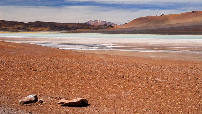 Salar de Tara, Désert de l'Atacama, Chili © Alain Pons