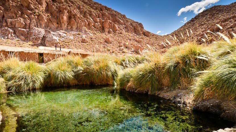 Excursion aux geysers d'El Tatio et aux thermes de Puritama, Explora en Atacama