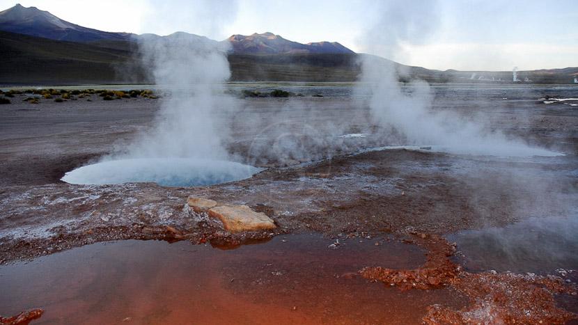 Excursion aux geysers d'El Tatio et aux thermes de Puritama, Désert de l'Atacama, Chili © Alain Pons