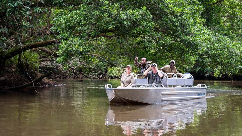 Safari en bateau et en kayak sur le fleuve Lekoli, Odzala Discovery Camps © Dana Allen