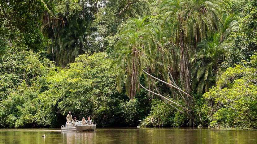 Safari en bateau et en kayak sur le fleuve Lekoli,