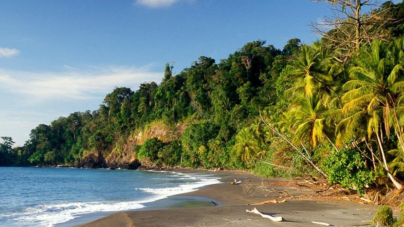 Parc national du Corcovado, Plage dans le parc de Corcovado, Costa Rica