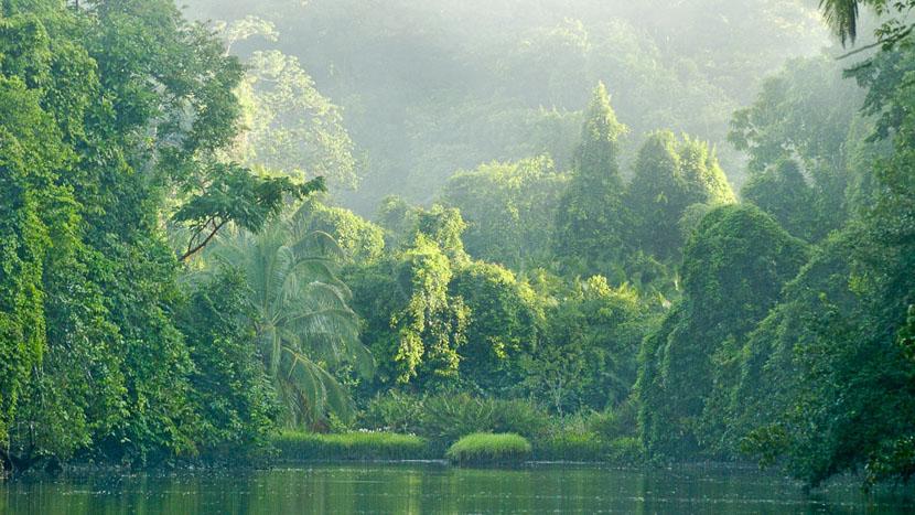 Parc national du Corcovado, Rio Sirena à Corcovado, Costa Rica