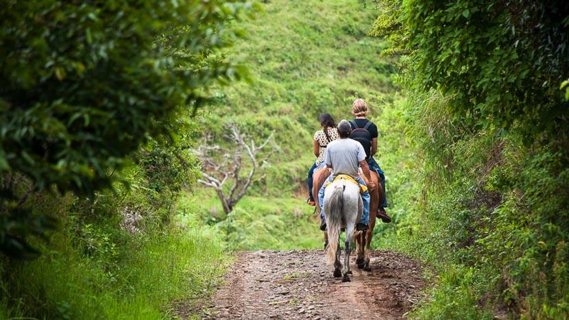 Balade à cheval, Balade à cheval en forêt, Costa Rica