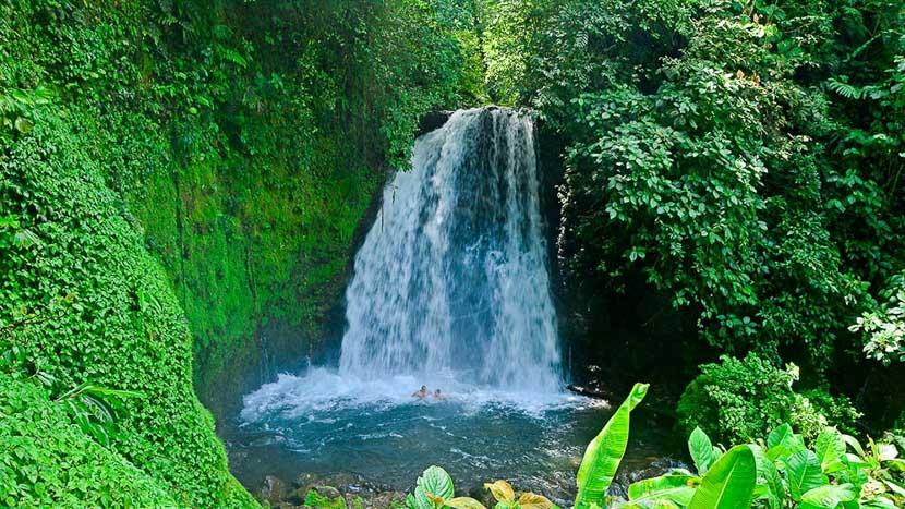 Costa Rica, le pays vert de la diversité, Sentier de la cascade à Arenal, Costa Rica