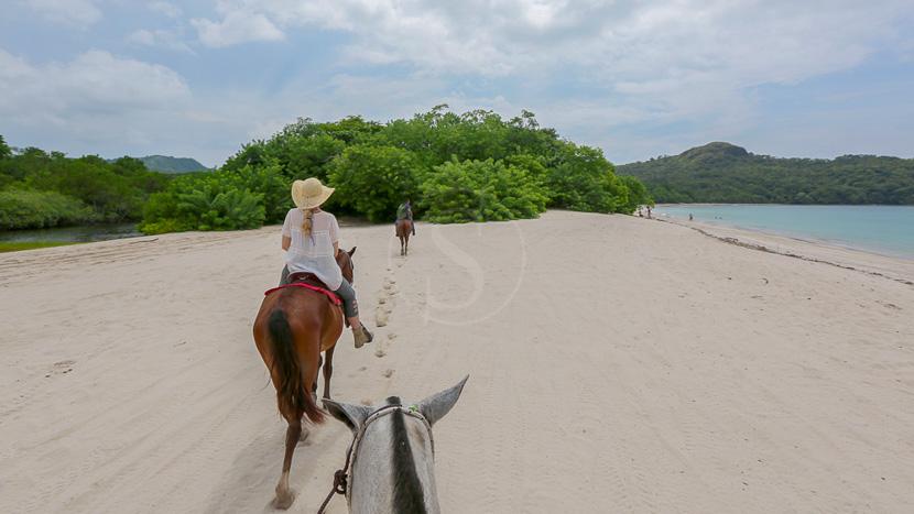 Pura Vida !, Casa Chameleon Las Catalinas Activites, Costa Rica