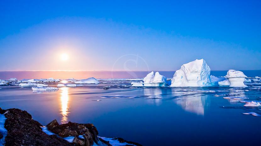 Passage du Nord Est, Croisière en Arctique © Shutterstock